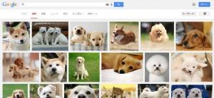 犬_検索画面
