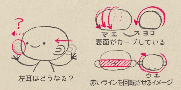 頭の形を考える