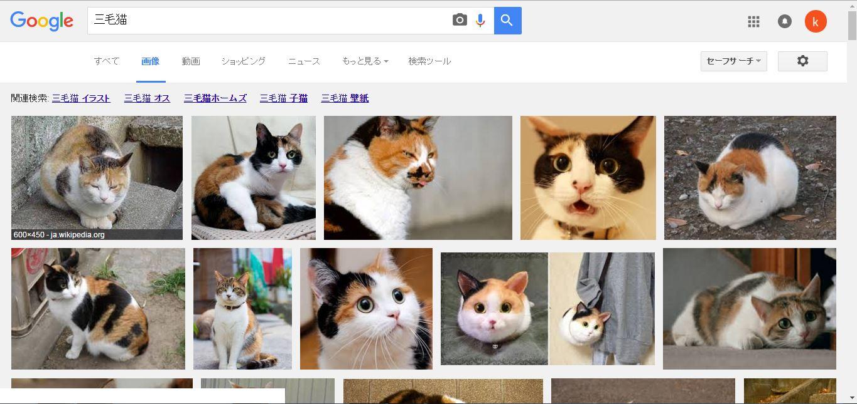 三毛猫 - Google 検索